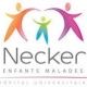 Department of Pediatric Neurosurgery, Necker Hospital